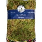 Forest_Moss_Dried_Natural_Green_16oz_Bag_21579