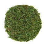 Mossy_Table_Setting_Forest_Moss_12in_26280