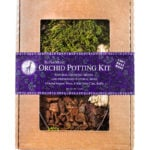 Orchid_Potting_Kit_Mountain_Moss_Preserved_8oz_Display_Box_90460