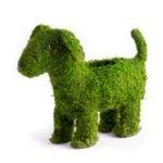 Puppy_planter_55408_03