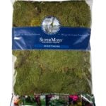 Sheet_Moss_Dried_Natural_32oz_Bag_21683