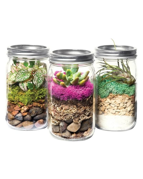 SuperMoss | Terrarium Kit DIY Jar, Laguna, 32oz Mason Jar