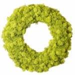 Wreath-Reindeer-Moss_Chartreuse